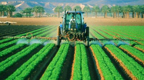 Küszöbön áll az újabb zöld forradalom