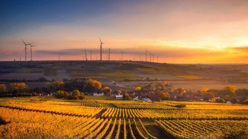 Digitalizáció a mezőgazdaságban: újabb trendek