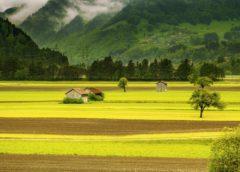 mezőgazdaságban iot