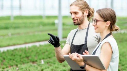 Okosabb mezőgazdaság: megjelent a precíziós fejlesztéseket támogató pályázat